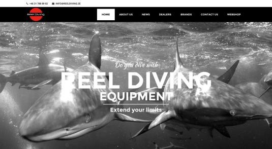 Reel Diving